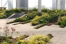 Roof terrace - landscaping