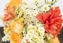 M & E's Wedding