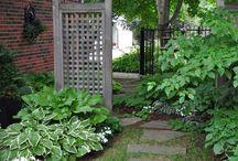 ogrody / zdjęcia mojego ogrodu i zdjęcia z Pinterestu