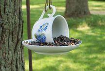 Bird Feeders / by Margo Long