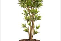 Artificial Trees / The most authentic looking replica trees