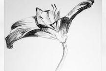 umenie :-)