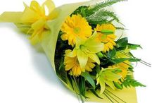 Birthday Flowers / Bookmyflowers brings best collection of flowers, bouquet that you can send to your friends and family members online.