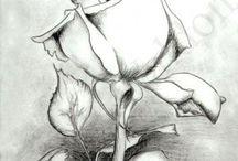 la gracia en flor