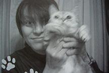 櫻井さんと猫 / BUCU-TICK 櫻井さんと猫の写真