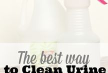 mr. clean / cleaning tips