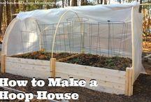 Gardening + Homesteading