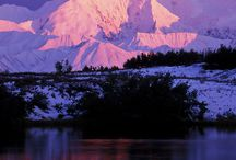 I heart Denali / All things Denali National Parks, Alaska