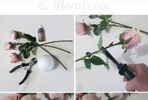 vágott virág dekorácio