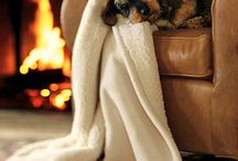 Inspirations - Cozy Times / by Jessica Barker