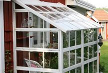 Greenhouse, sheds and pottingbenches,