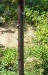 Bodega Sticks / Take a Hike!  Bring Wine! Find them on Facebook.