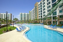 The Owl's Nest / FAU's Residence Halls and Apartments / by FAUHousing