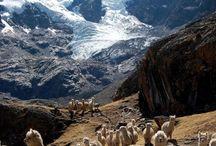 Vacation to Peru