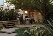 garden_back yard
