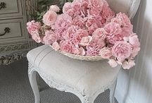 Shabby chic & Romantic