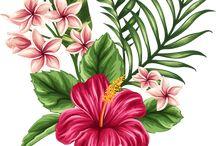 Bloemen een bladeren voor tattoo