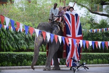 Diamond Jubilee / See how British embassies, high commissions and missions overseas have been marking HM The Queen's Diamond Jubilee