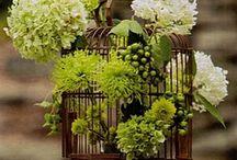 Cage flower arrangements