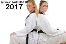 European 2017 Calendar / 2017 European Calendar