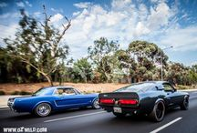 Ford Mustang Car / Mustangs  photos by www.ozwild.com