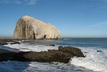 Rocas del Maule / formaciones rocosas que se ubican en la costa del maule y en la VII region de Chile