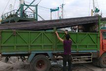 Supplier & Distributor Baja - Jual Besi UNP / CNP Lengkap, Murah dan Ready. / PramanaBaja.com merupakan supplier dan distributor aneka ragam produk baja, seperti besi / kanal UNP & CNP. Ready! Pertanyaan? Jangan sungkan hubungi kami di : 0813 3535 2009 (Rinanti)