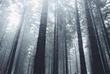 Lifestyle / Landscape photography