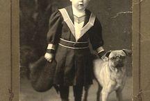 Pugs (Vintage)