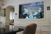 Fish tank interiors