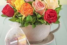 Our Teacup Roses / Who would have thought you could only use a cup for a cuppa?