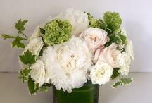 kirsten / bridal shower flowers