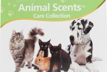 Pet Care / Do you love your pet? Treat them to something special with these all natural essential oil pet care products.