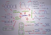 Física-1°Bi.17