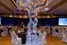 Ice Ball / Step into a winter wonderland on August 23rd. This year's Ice Ball will feature the coolest Austin restaurants, frosty signature cocktails, towering ice sculptures, dream vacations and tempting luxuries for auction, live music and dancing. Learn more at http://www.AustinIceBall.org