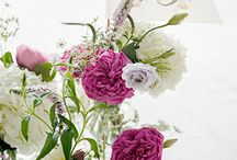 Wedding / by Martha Moran