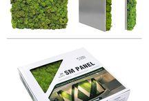 projekty zielona sciana