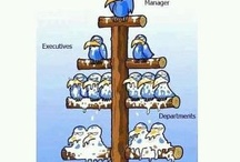 Management / Well manage will give optimal result
