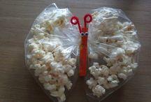 vlinder / popcorn