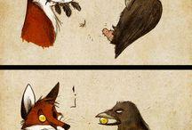 Culpeo - fox