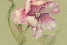 Флора, прелестная флора