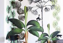tropische inrichting