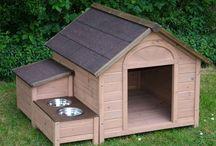 Dog shed