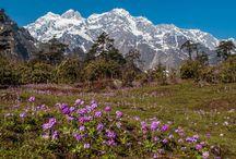 Sikkim / #sikkim