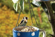 vtáčie krmitká a budky