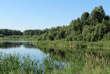 Nature near YEG / Visit local natural areas close to #yeg and discover native species.