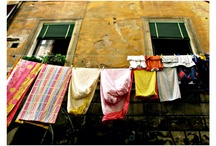 |----Laundry--Drying----| / by Phyllis Martin