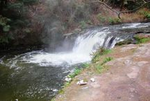 Places to visit in Rotorua