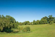 Golf / Golf in Somerset and devon
