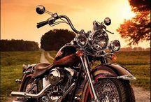 Harley Davidson e ....